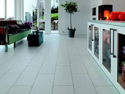 Gloss Tile Effect Laminate Flooring Extendable Garden Lawn Edging Wood Wooden Trellis Fence Border