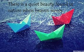 quotes about beauty in you 100 quotes about beauty day 100 quote for beauty salon