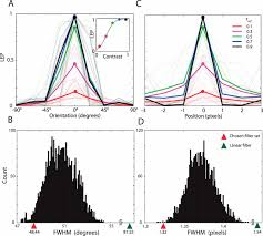 computing local edge probability in natural scenes from a