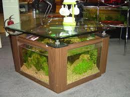 Fabulous Nuance Fresh Blue Square Fish Tank Desk That Has Natural Nuance Inside