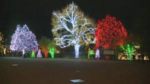 when does the lights at the toledo zoo start toledo zoo voted best zoo lights for second year toledome wtvg