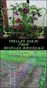 Simple Trellis Ideas Making Your Own Trellis Has Never Been This Easy Or Cheap These