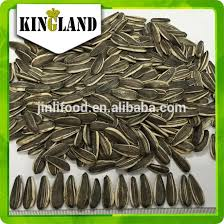 bulk sunflower seeds for oil wholesale sunflower seeds suppliers