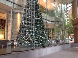 top christmas tree displays in sydney sydney by caroleann