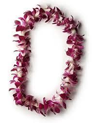hawaiian fresh single strand orchid