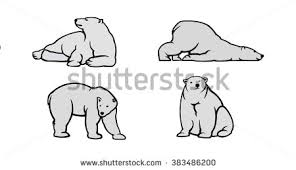 white bear stock images royalty free images u0026 vectors shutterstock