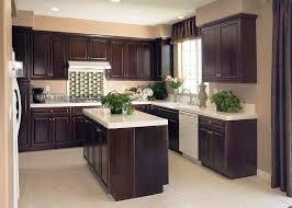 Black Appliances Kitchen Design - dark cabinet kitchens with black appliances design u2014 indoor