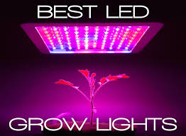 usa made led grow lights best led grow lights guide be an informed buyer