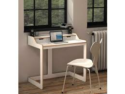 Computer And Printer Desk Home Office Work Desk Ideas Home Offices Design Office Desks And