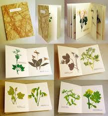 Drying Flowers In Books - hannah skoonberg u203a u003ca href u003d