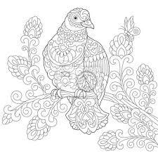 Coloriage de loiseau de colombe pigeon dessin déquisse à
