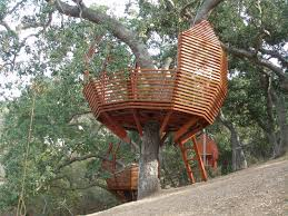 marvelous simple tree house plans images best inspiration home