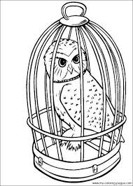 best solutions of harry potter coloring pages to print about