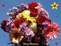 Christmas Ornaments Wholesale Philippines by 30 Best Wallpapers Tropical Scenery Images On Pinterest Scenery