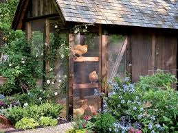 Chickens For Backyards by Raising Chickens In The South Southern Living