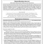 business intelligence sample resume rimouskois job resumes