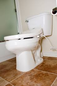 Bidet Define The Korean Runs Amok Exposing The Dirty Filthy Nasty Smelly
