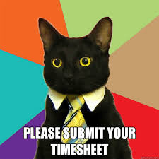 Submit Meme - please submit your timesheet cat meme cat planet cat planet