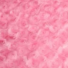 swirl bud minky fabric