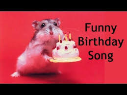 best 25 funny happy birthday video ideas on pinterest happy