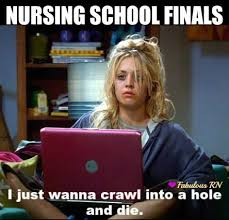 Nursing Student Meme - amazing nursing student meme best 25 student nurse humor ideas on
