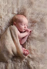newborn photography chicago sweet barrington il newborn baby photography