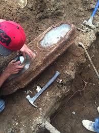 little rose still in hand found in coffin beneath sf home
