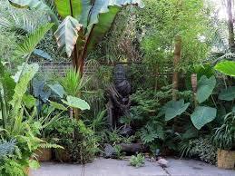 Small Tropical Garden Ideas Plants Idea For Modern Tropical Garden 4 Home Ideas