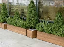 vasi in plastica da esterno scegliere i vasi per piante da esterno scelta dei vasi come