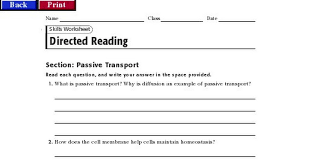 Cell Transport Skills Worksheet Answers Biology Directed Reading Guide 4 1 Pdf Drive