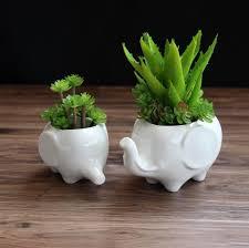 cute plant elephant cute creative pots garden decor ceramic ornaments crafts