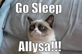 Grumpy Cat Sleep Meme - grumpy cat memes quickmeme