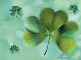 celtic irish shamrock wallpaper
