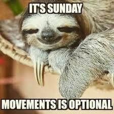 Funny Sunday Memes - lazy sunday memes enjoy your lazy sunday lazy sunday sunday