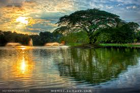 lake tree sun malaysia hdr photography come to
