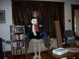 Horse Jockey Halloween Costume Ostrich Rider Occasions Holidays