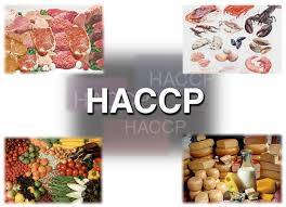 haccp d inition cuisine haccp coordinator description