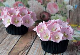 cupcakes by design plano home interior and exterior design easily