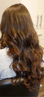 hothead hair extensions hair extensions by hotheads thadra s hair cafe
