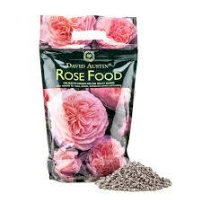 david austin rose food rose care
