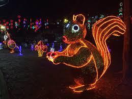 Washington Dc Zoo Lights Around The World Night Lights Project One Thousand
