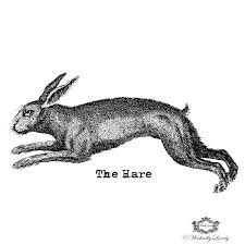 vintage rabbit the vintage hare tattoo rabbit tatoo vintage rabbit tattoo