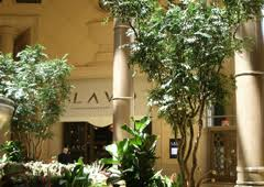 artificial plants and tree store