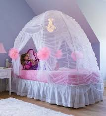 Pink Canopy Bed Bed Canopies You Ll