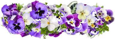 Flowers Decor Free Illustration Flowers Decoration Free Image On Pixabay