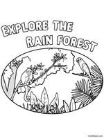 rain forest theme unit animals reading comprehensions pictures