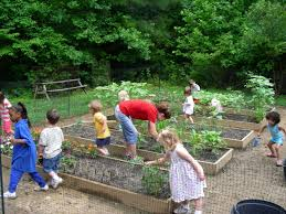 Make A Vegetable Garden by Children U0027s Vegetable Gardens Introduction Natural Learning