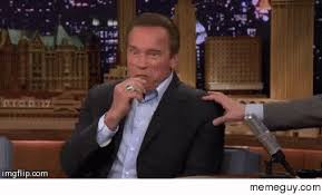 Arnold Schwarzenegger Memes - arnold schwarzenegger meme guy