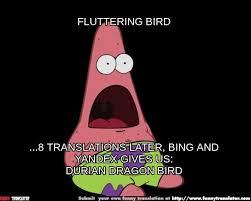 Anonymous Meme - durian dragon bird meme by anonymous bad translator