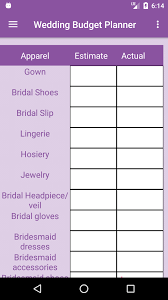 wedding budget planner m1 png